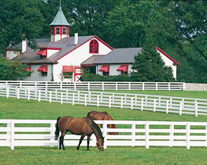 Horse Farms For Sale In Ulster County